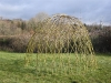 Living Willow Dome - 2m diameter, 1.5m high