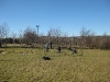 Ysgol Gynradd Cwrtnewydd - Living Willow Play Area - The uprights are planted.