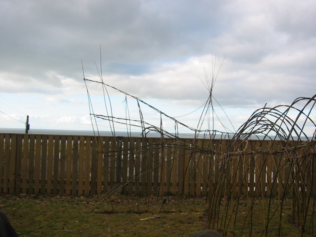 Ysgol Llannon Living Willow Play Area