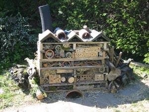 Ysgol Pontrhyfendigiad Bug Palace